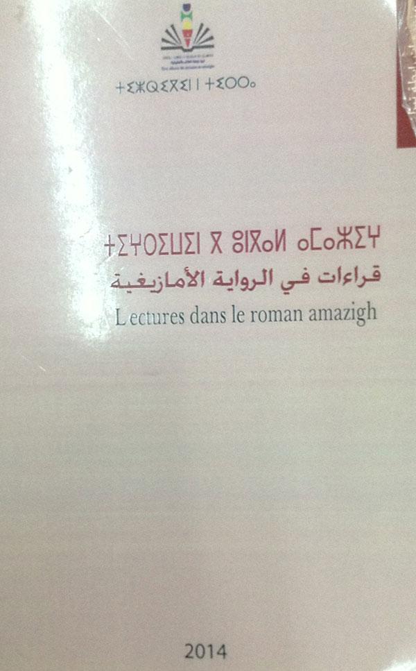 Read more about the article قراءات في الرواية الأمازيغية
